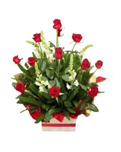 12 Long Stem Roses Arrangement -SPECIAL OFFER