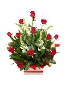 12 Long Stem Roses Arrangement -SPECIAL OFFER