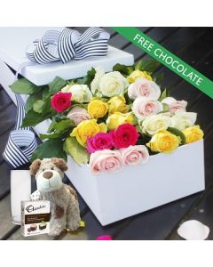 20 Mixed Roses,Chocolates and Teddy with Vase