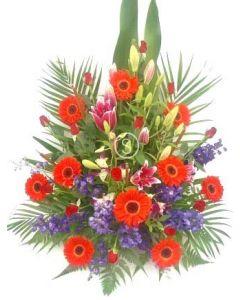 Flowers for a Newborn Boy