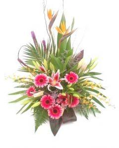 Modern Flower Delights