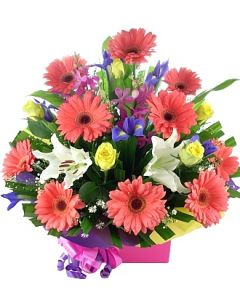 Bright Colourful Arrangement
