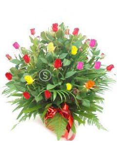 100 Mixed Coloured Roses
