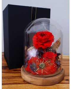 Preserved Rose Melbourne, Everlasting Flowers