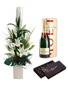 Oriental Lilies in Pot & Moet with Dark Chocolate
