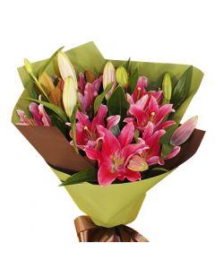 Lush Lilies Pink