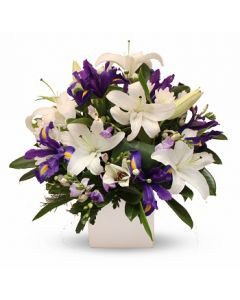 White and Blue Arrangement