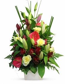 Flowers Delight