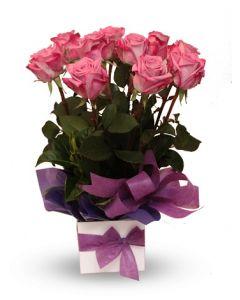 Purple Roses Arrangement